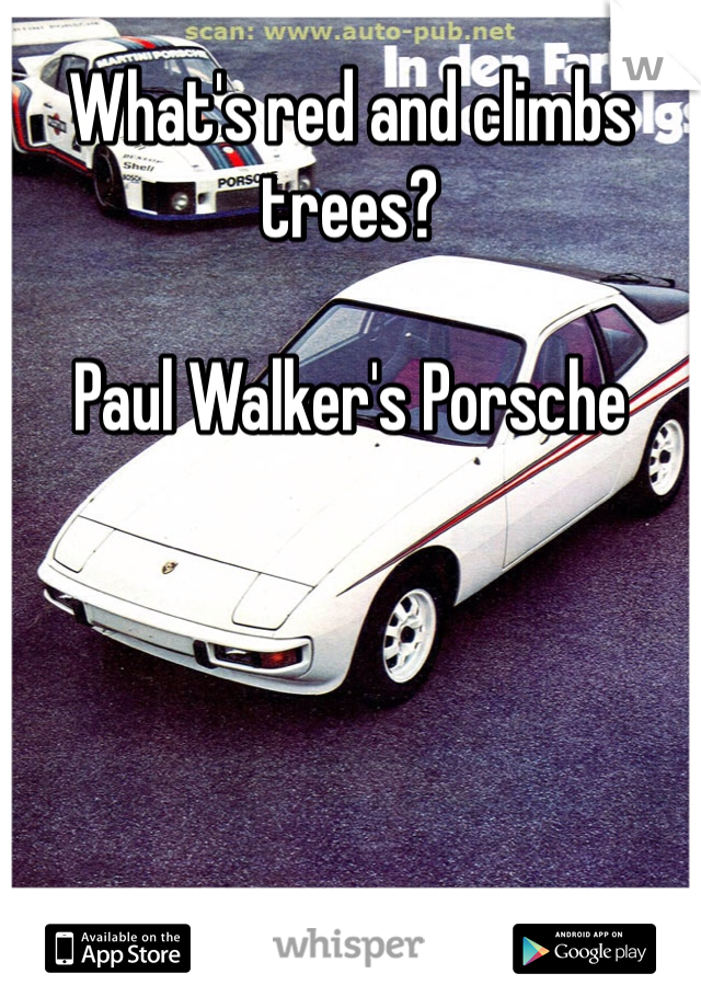What's red and climbs trees?  Paul Walker's Porsche