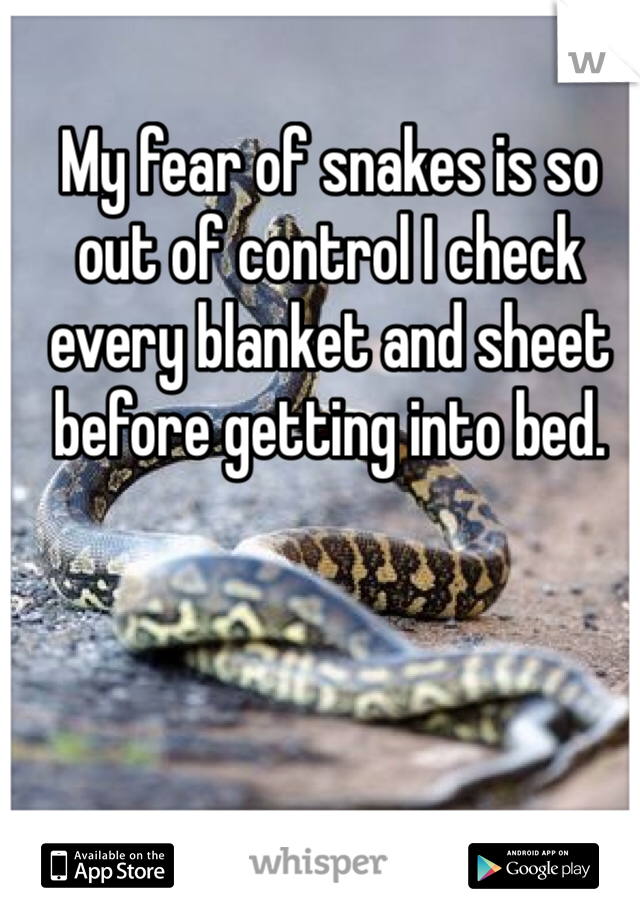 My fear of snakes is so out of control I check every blanket and sheet before getting into bed.