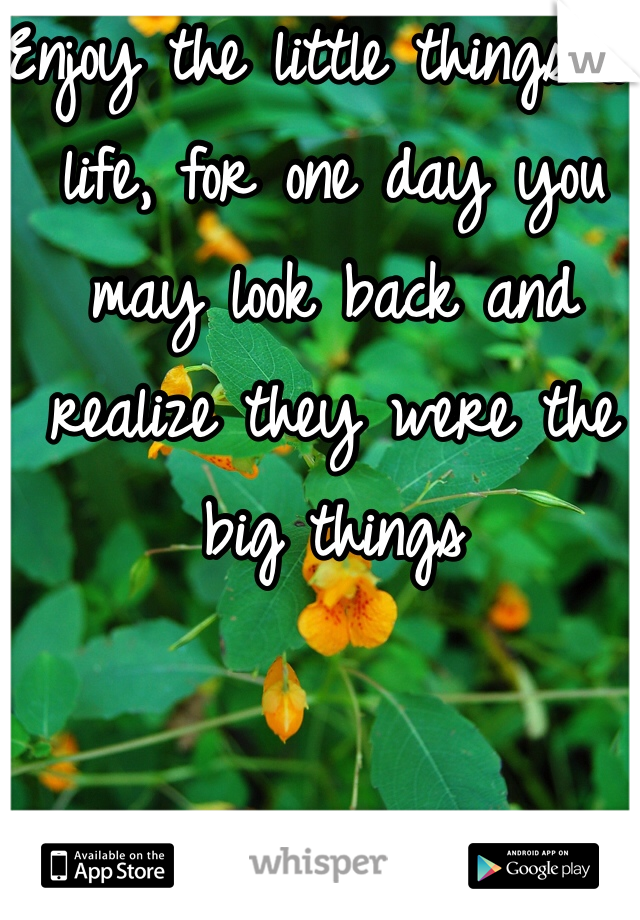 Enjoy the little things in life, for one day you may look back and realize they were the big things