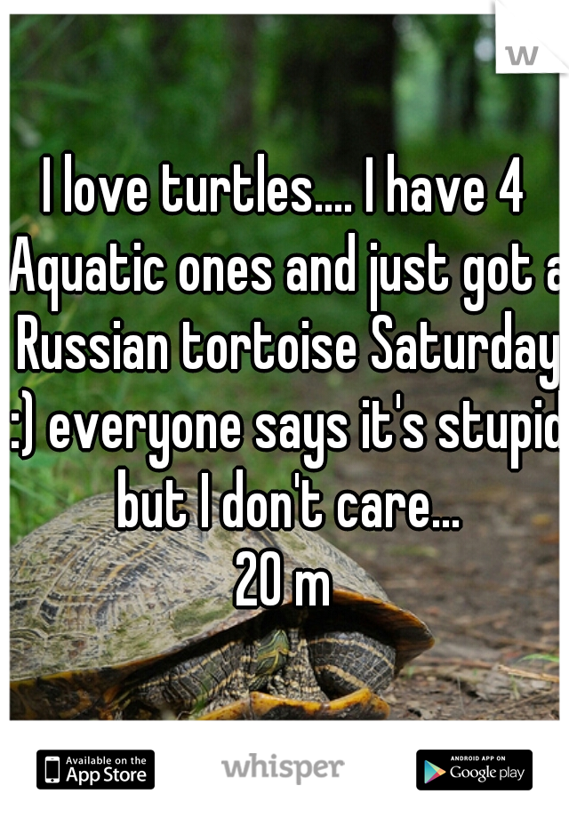I love turtles.... I have 4 Aquatic ones and just got a Russian tortoise Saturday :) everyone says it's stupid but I don't care... 20 m