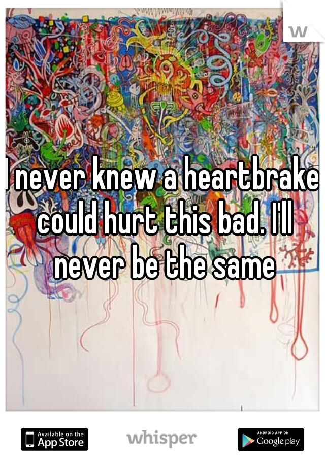 I never knew a heartbrake could hurt this bad. I'll never be the same