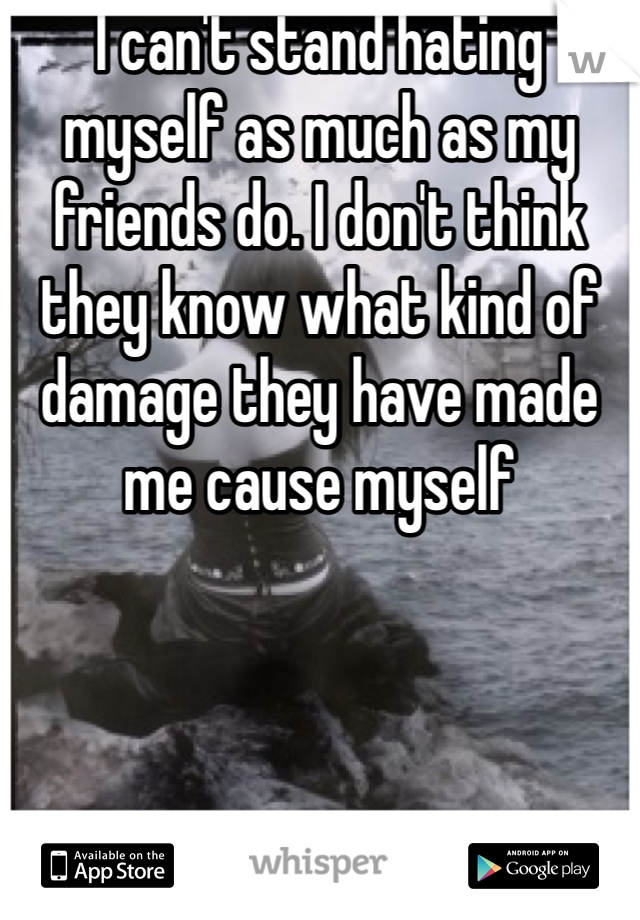 I can't stand hating myself as much as my friends do. I don't think they know what kind of damage they have made me cause myself
