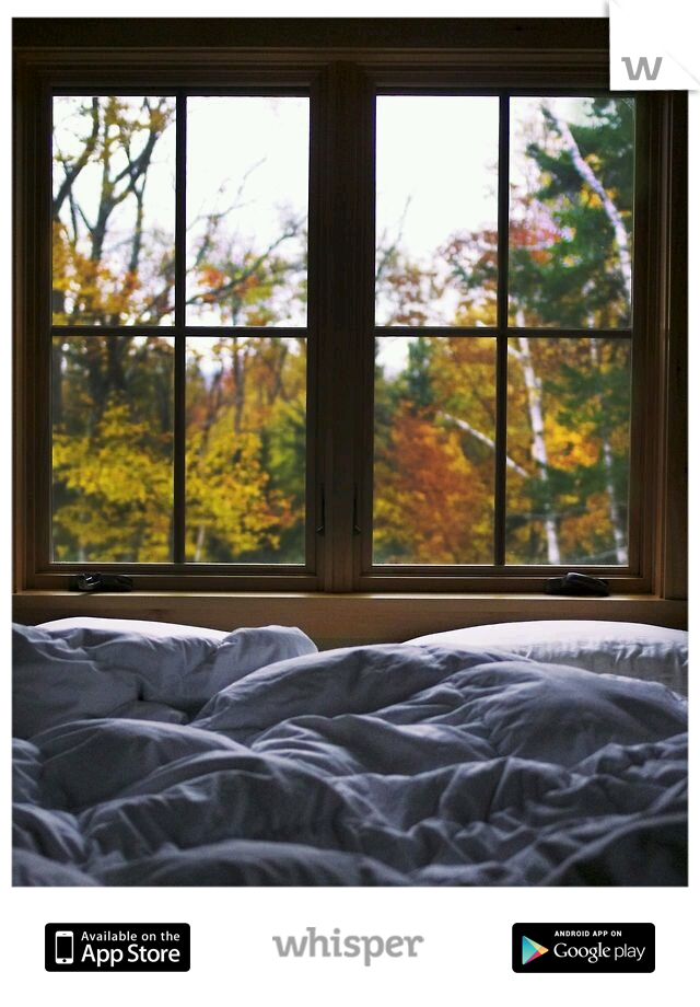 I love laying in bed on a cold day..