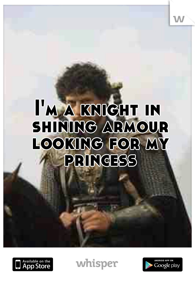 I'm a knight in shining armour looking for my princess