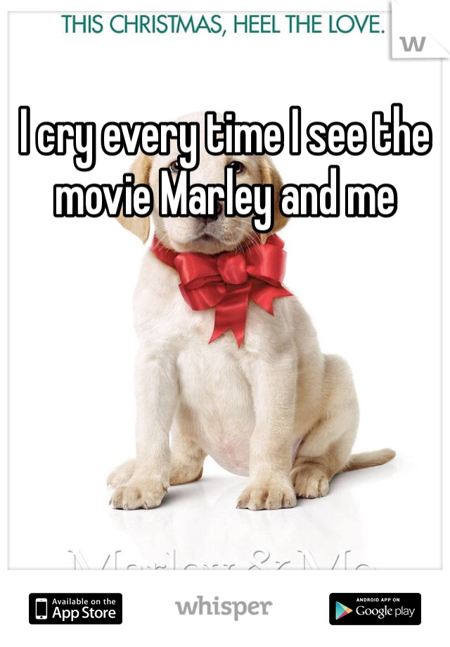 I cry every time I see the movie Marley and me