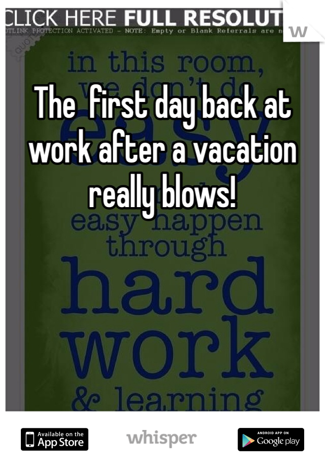 The  first day back at work after a vacation really blows!