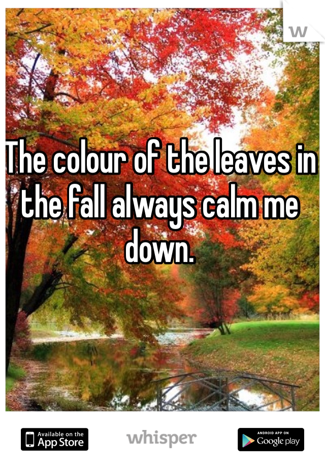 The colour of the leaves in the fall always calm me down.