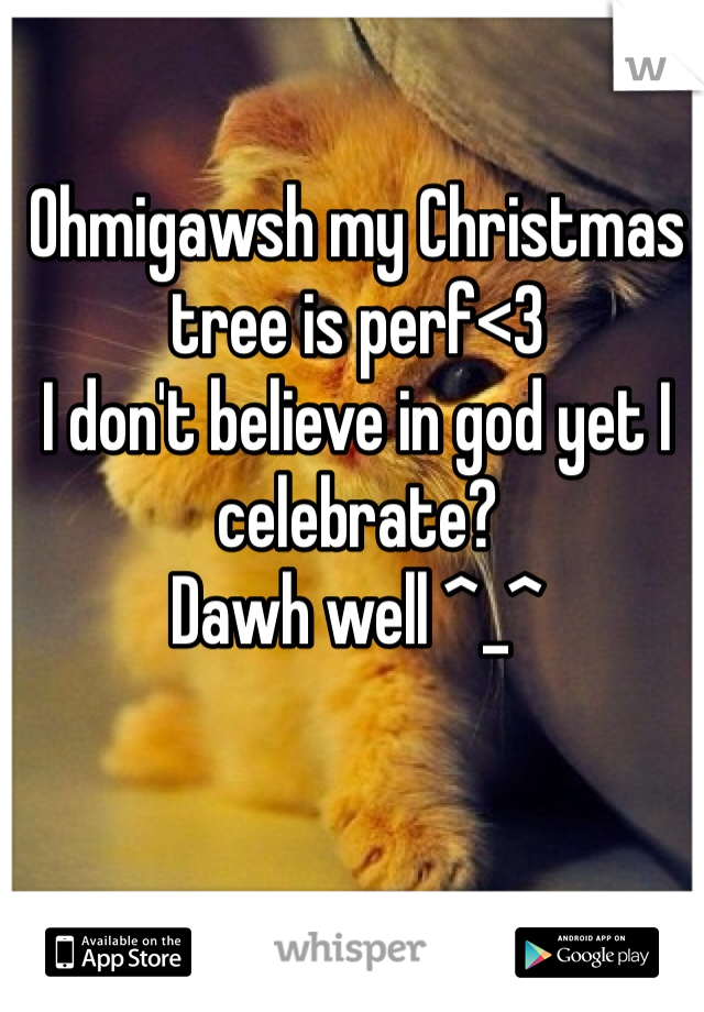 Ohmigawsh my Christmas tree is perf<3 I don't believe in god yet I celebrate? Dawh well ^_^