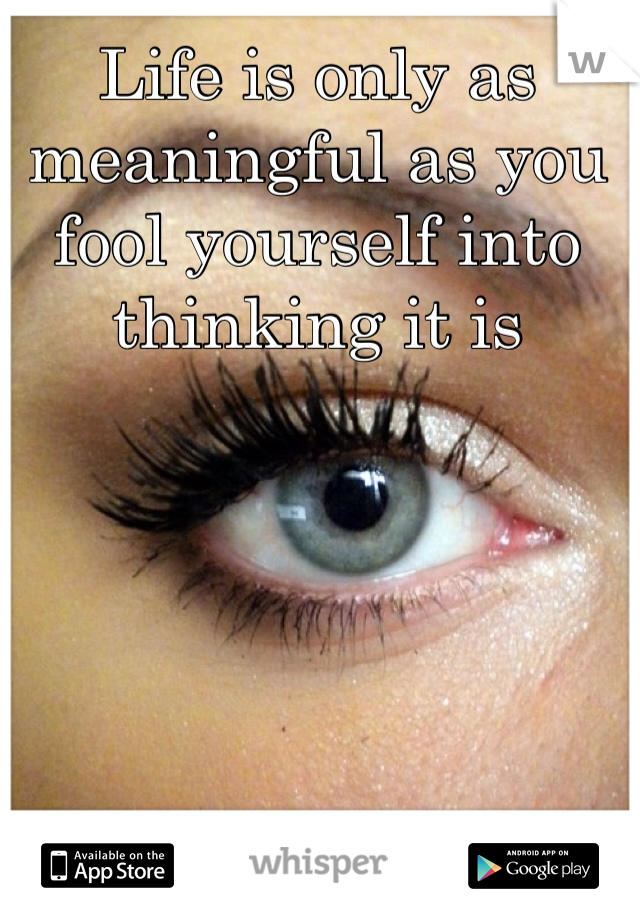 Life is only as meaningful as you fool yourself into thinking it is