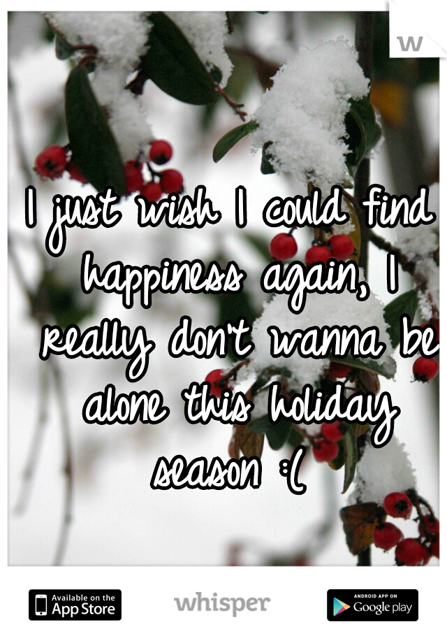 I just wish I could find happiness again, I really don't wanna be alone this holiday season :(