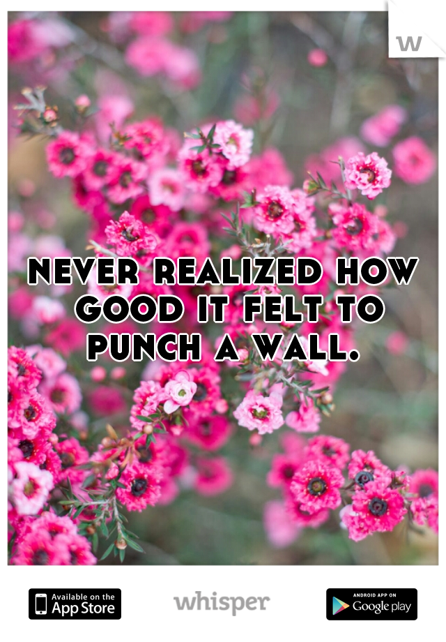 never realized how good it felt to punch a wall.