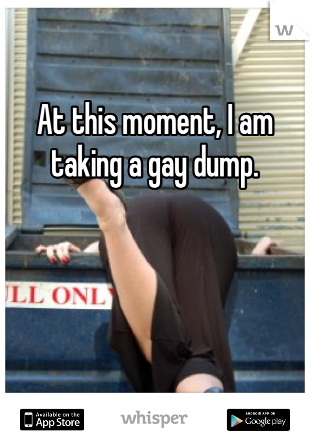 At this moment, I am taking a gay dump.