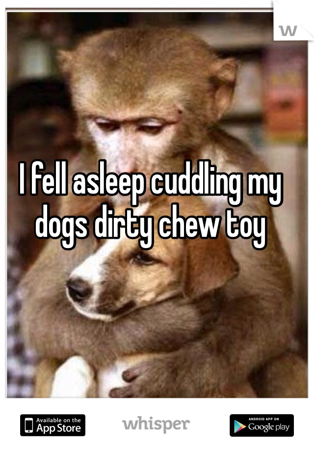 I fell asleep cuddling my dogs dirty chew toy