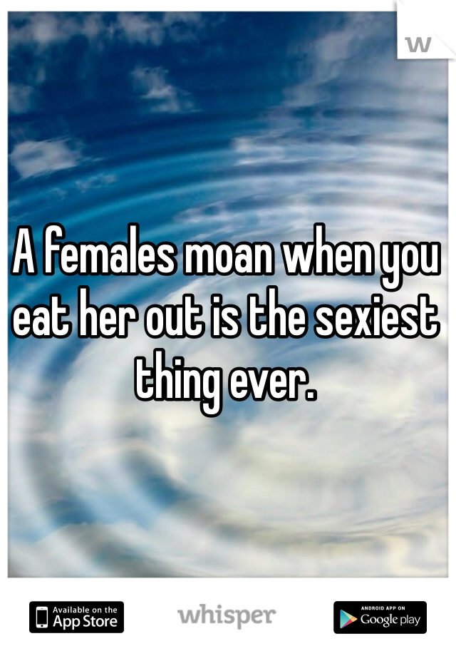 A females moan when you eat her out is the sexiest thing ever.