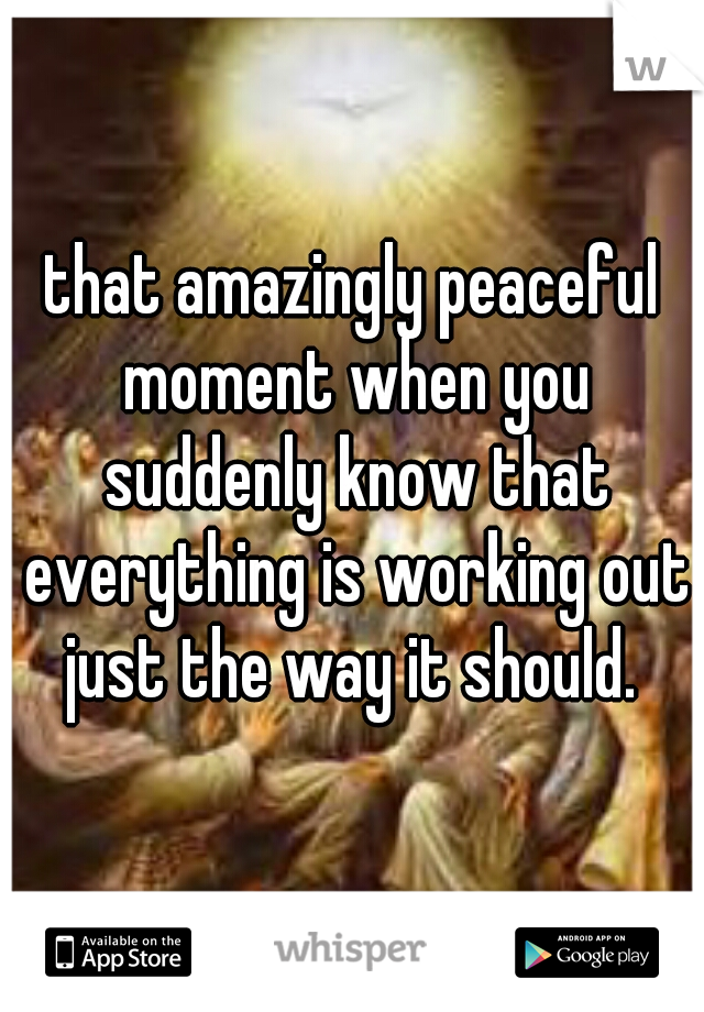 that amazingly peaceful moment when you suddenly know that everything is working out just the way it should.