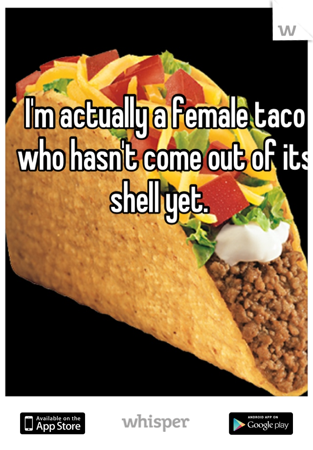 I'm actually a female taco who hasn't come out of its shell yet.