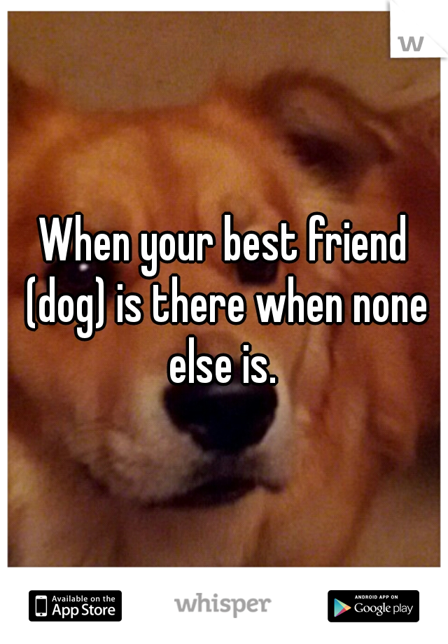 When your best friend (dog) is there when none else is.