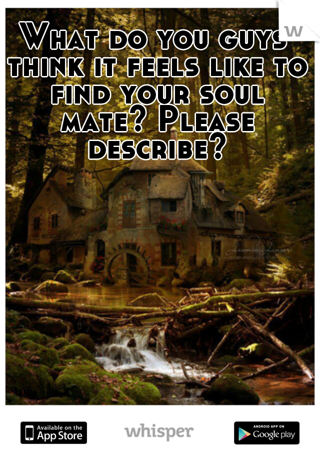 What do you guys think it feels like to find your soul mate? Please describe?