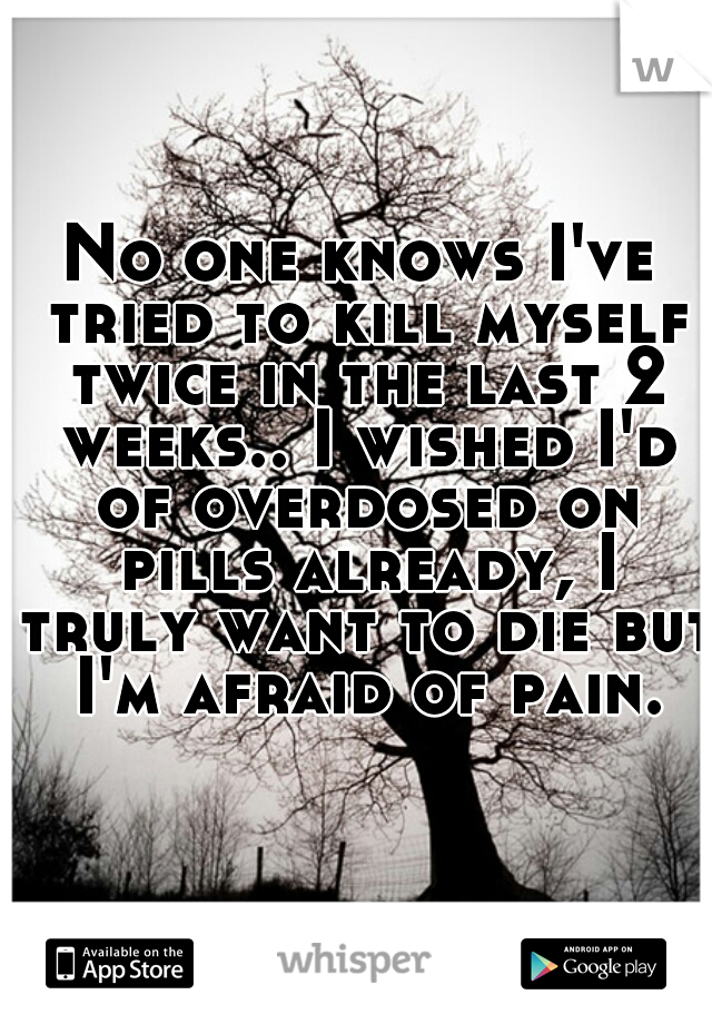 No one knows I've tried to kill myself twice in the last 2 weeks.. I wished I'd of overdosed on pills already, I truly want to die but I'm afraid of pain.