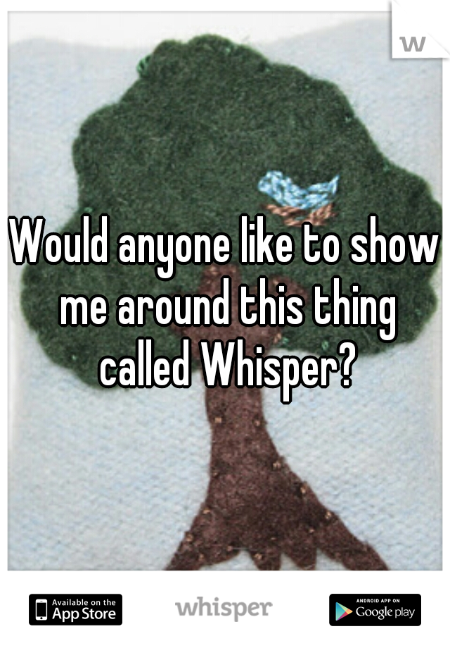 Would anyone like to show me around this thing called Whisper?