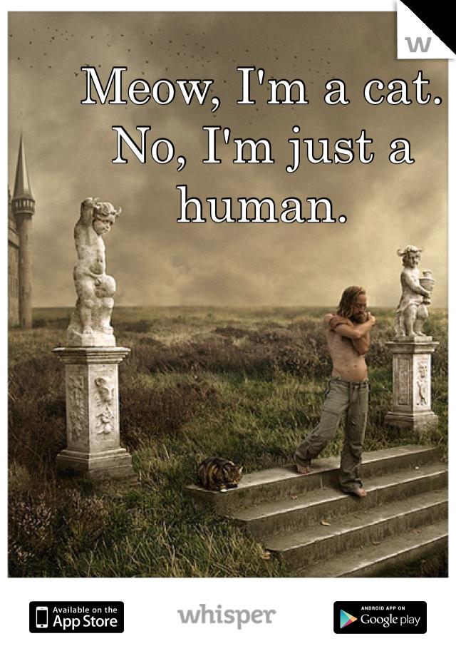 Meow, I'm a cat. No, I'm just a human.