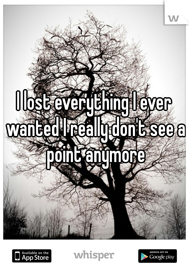 I lost everything I ever wanted I really don't see a point anymore