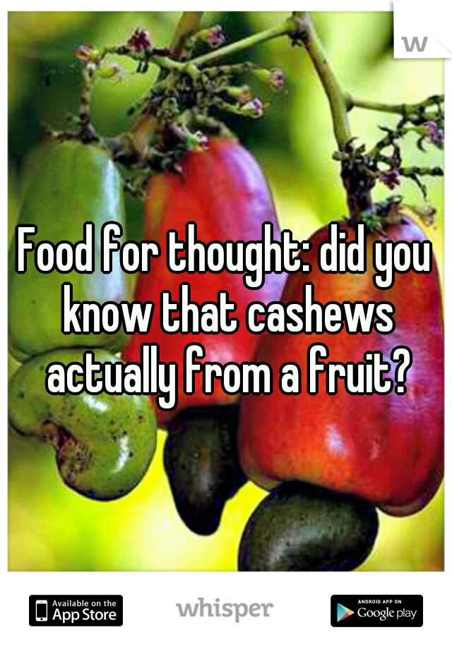 Food for thought: did you know that cashews actually from a fruit?