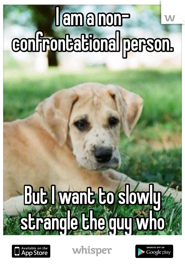 I am a non-confrontational person.       But I want to slowly strangle the guy who stole my dog.