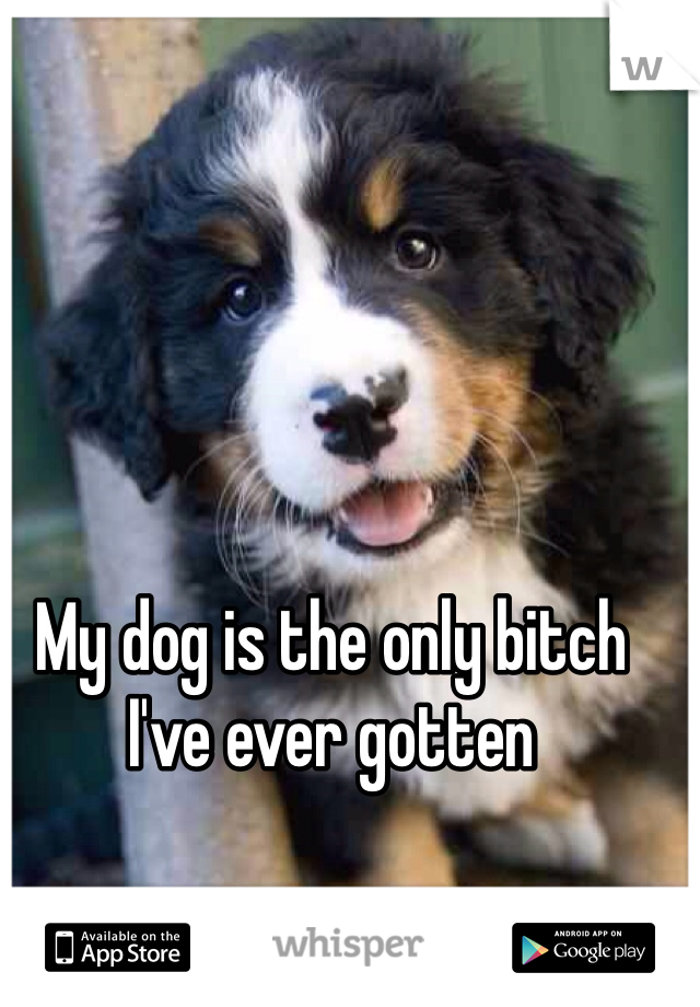 My dog is the only bitch I've ever gotten