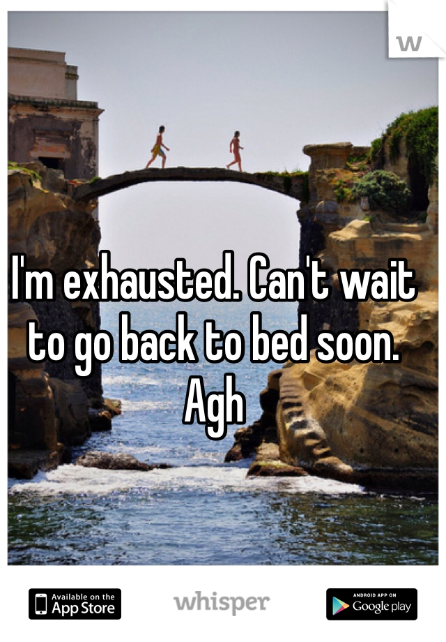 I'm exhausted. Can't wait to go back to bed soon. Agh