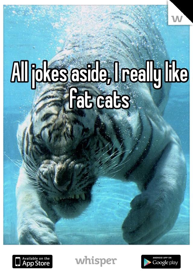 All jokes aside, I really like fat cats