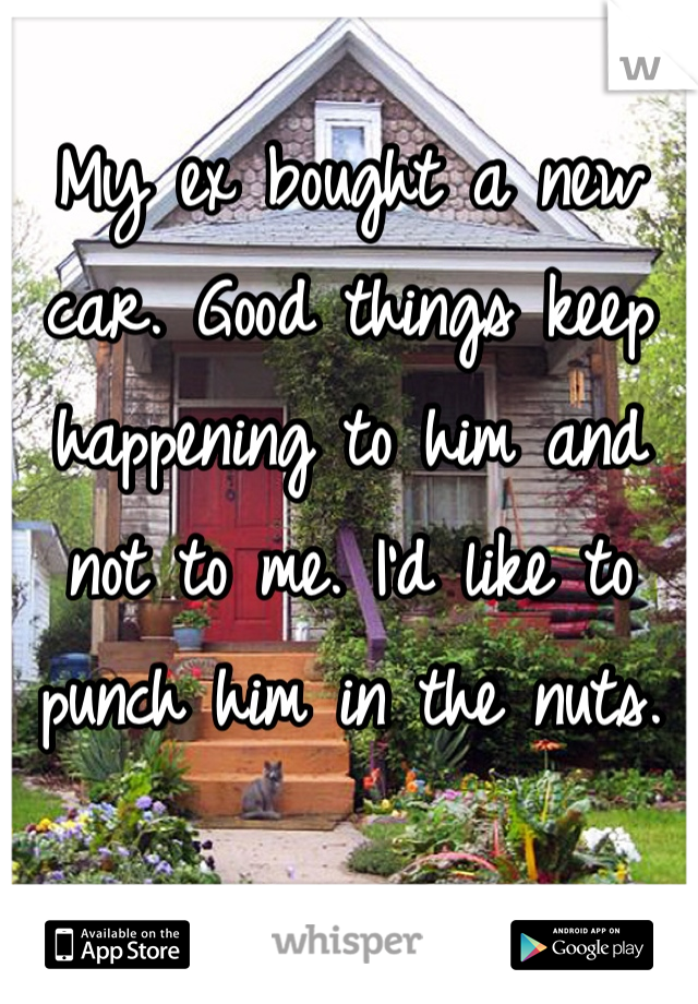 My ex bought a new car. Good things keep happening to him and not to me. I'd like to punch him in the nuts.