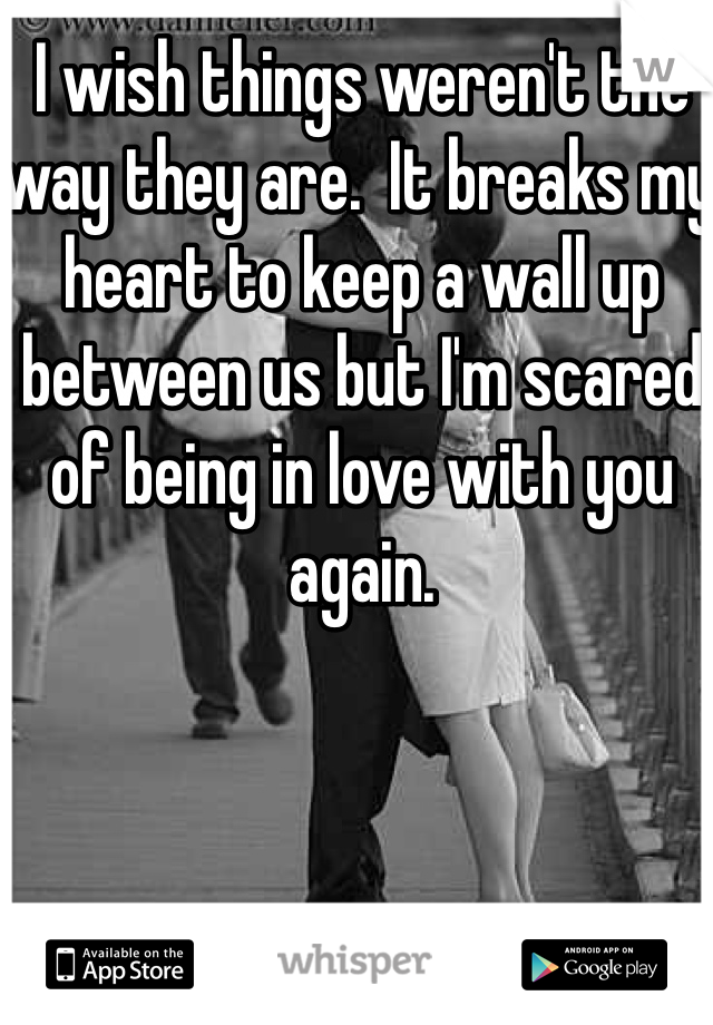 I wish things weren't the way they are.  It breaks my heart to keep a wall up between us but I'm scared of being in love with you again.