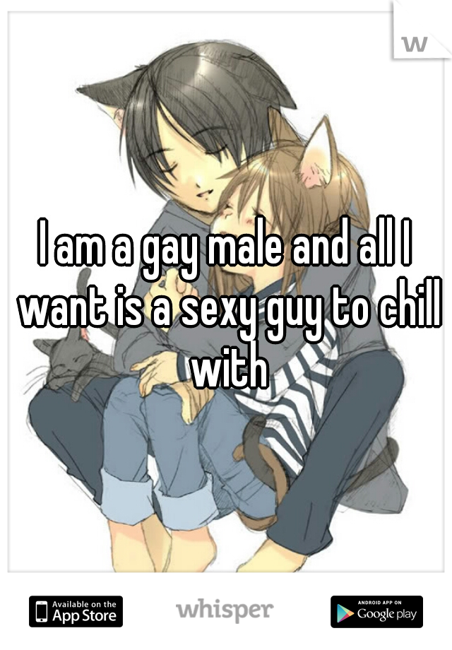 I am a gay male and all I want is a sexy guy to chill with