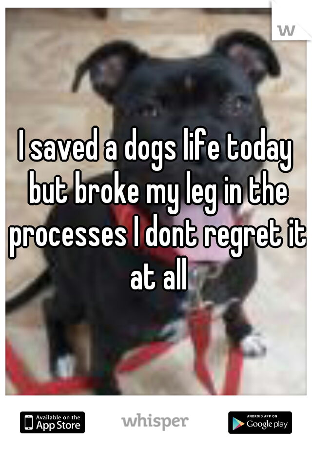 I saved a dogs life today but broke my leg in the processes I dont regret it at all