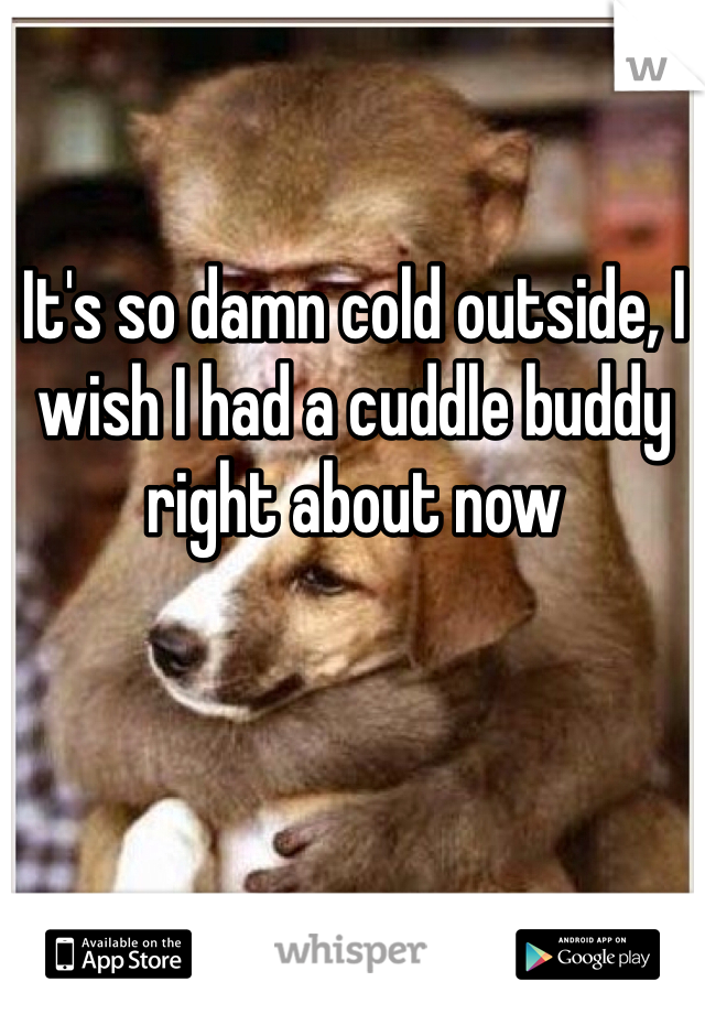 It's so damn cold outside, I wish I had a cuddle buddy right about now