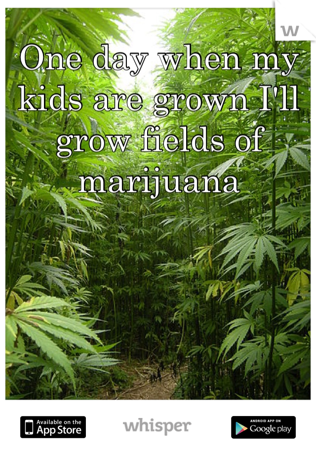 One day when my kids are grown I'll grow fields of marijuana