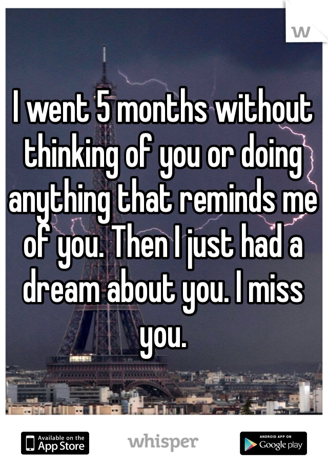 I went 5 months without thinking of you or doing anything that reminds me of you. Then I just had a dream about you. I miss you.