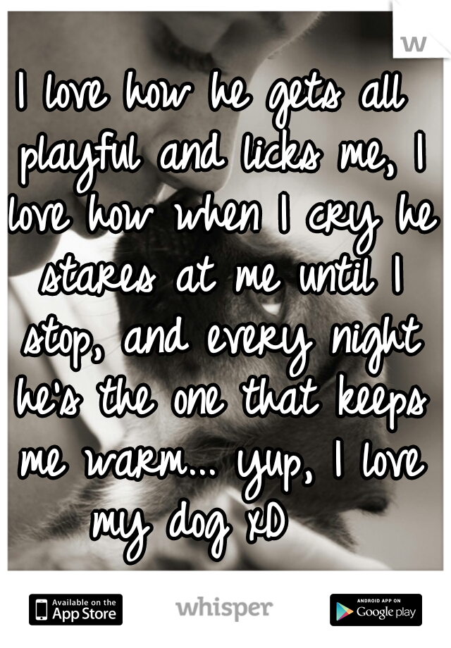 I love how he gets all playful and licks me, I love how when I cry he stares at me until I stop, and every night he's the one that keeps me warm... yup, I love my dog xD