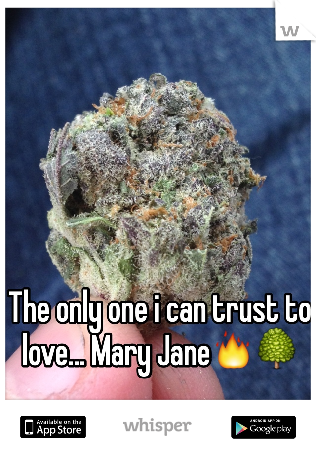 The only one i can trust to love... Mary Jane🔥🌳