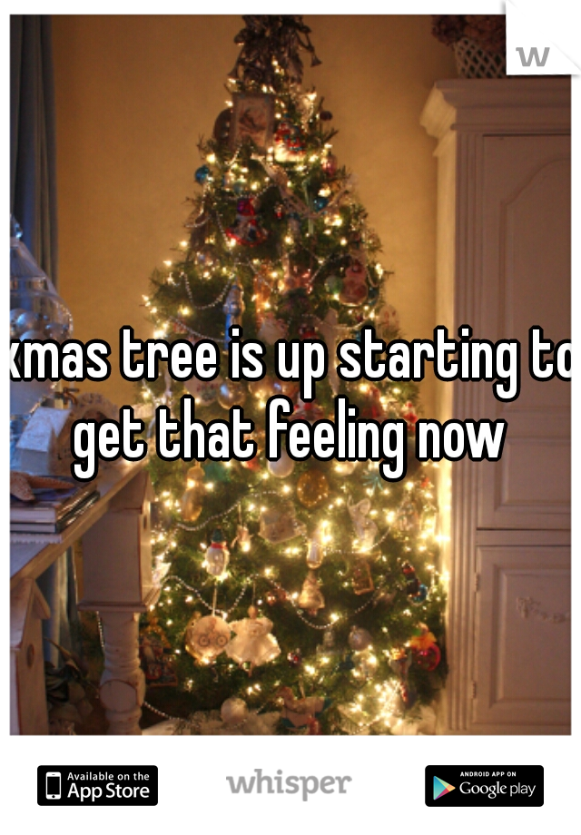 xmas tree is up starting to get that feeling now
