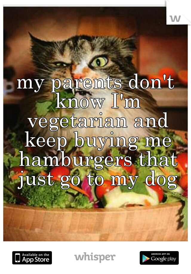 my parents don't know I'm vegetarian and keep buying me hamburgers that just go to my dog