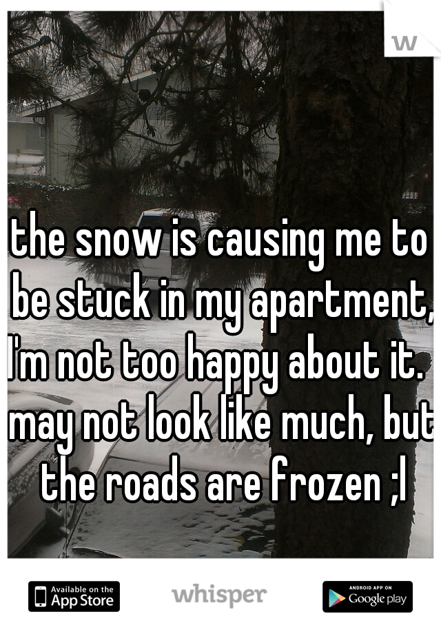 the snow is causing me to be stuck in my apartment, I'm not too happy about it.   may not look like much, but the roads are frozen ;l
