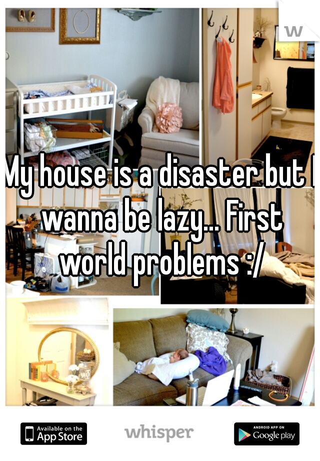 My house is a disaster but I wanna be lazy... First world problems :/