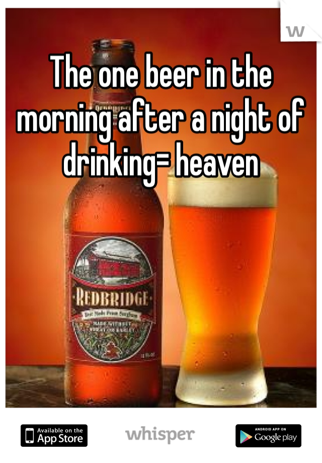 The one beer in the morning after a night of drinking= heaven