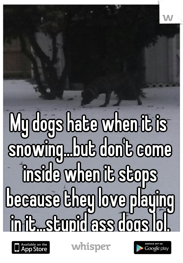 My dogs hate when it is snowing...but don't come inside when it stops because they love playing in it...stupid ass dogs lol.