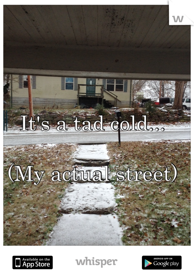 It's a tad cold...   (My actual street)