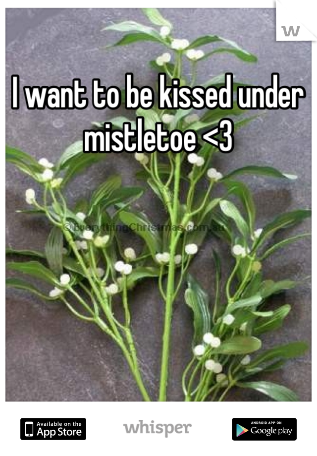 I want to be kissed under mistletoe <3