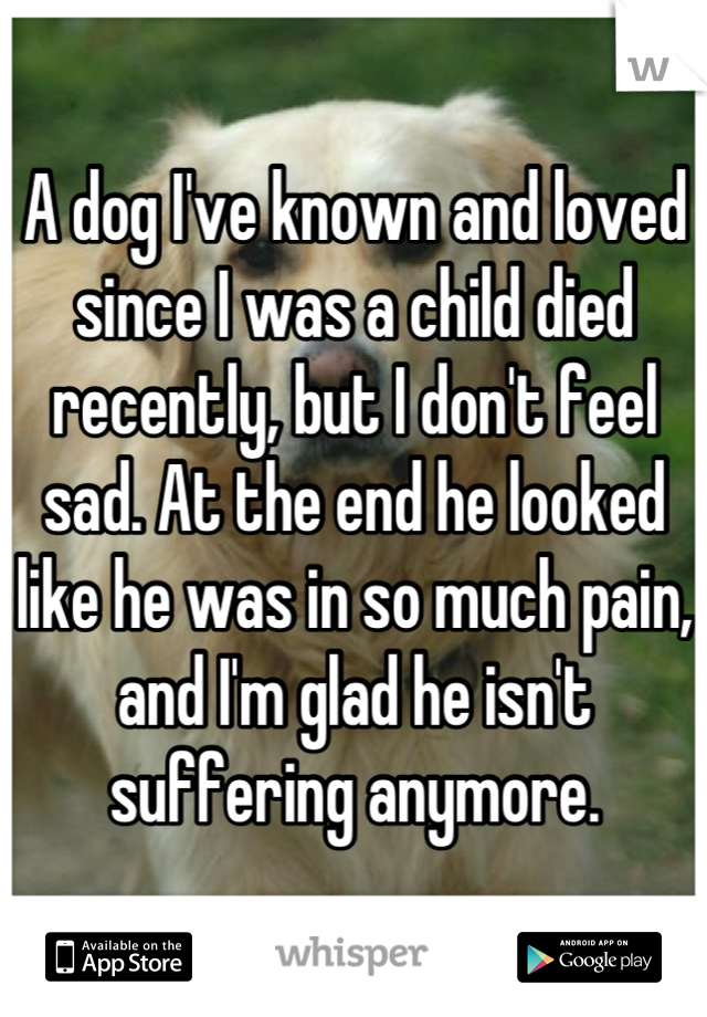 A dog I've known and loved since I was a child died recently, but I don't feel sad. At the end he looked like he was in so much pain, and I'm glad he isn't suffering anymore.