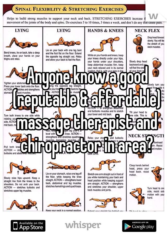 Anyone know a good (reputable & affordable) massage therapist and chiropractor in area?